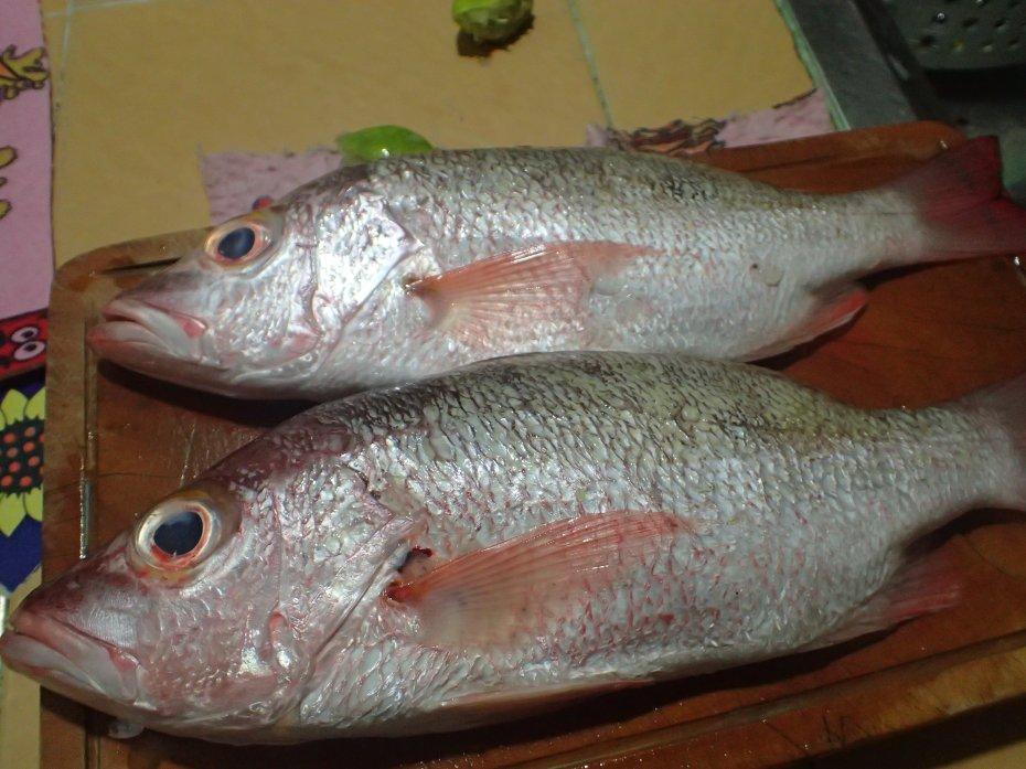 Fish cost $8.000 ($2.70 USD)