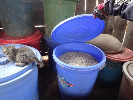 Rice wine fermenting